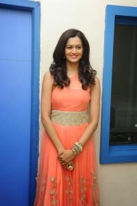 Beautiful Shubra Aiyappa Pictures at Prathinidhi Success Meet