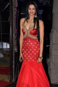 Actress Shubra Aiyappa@ An Ode to Weaves and Weavers by Shravan Kumar