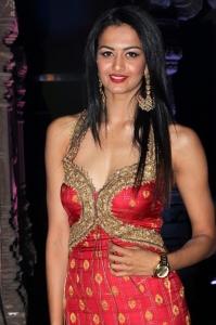 Actress Shubra Aiyappa Hot Pics @ An Ode To Weaves & Weavers Fashion Show