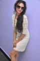 Shweta Bhardwaj New Stills at Adda Press Show