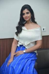 Anchor Shyamala Pictures @ Maestro Pre Release
