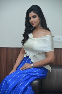 Anchor Shyamala New Pictures at Maestro Movie Pre Release