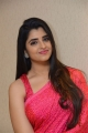 Anchor-Shyamala-New-Saree-Photos-@-Question-Mark-Movie-Song-Launch-114166a