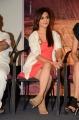 Actress Ragini Nandwani @ Siddhartha Movie Teaser Launch Stills