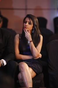 Trisha Krishnan at South Indian International Movie Awards 2012 Photos