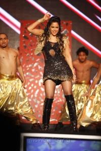 Sameera Reddy at South Indian International Movie Awards 2012 Photos