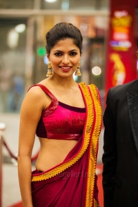 Parvathy Omanakuttan @ SIIMA Awards 2013 Day 1 Photos