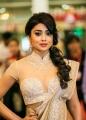 Shriya Saran @ SIIMA Awards 2013 Day 2 Photos