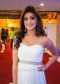 Pranitha @ SIIMA Awards 2013 Day 2 Photos