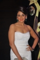 Parul Yadav at SIIMA Awards 2013 Red Carpet Stills