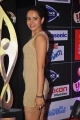 Sunitha Rana at SIIMA Awards 2013 Red Carpet Stills