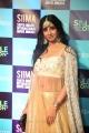 Sanjana Galrani @ SIIMA Awards 2019 Day 1 Photos