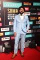 SIIMA Awards 2019 Day 1 Photos