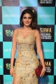 Niddhi Agrewal @ SIIMA Awards 2019 Day 1 Photos