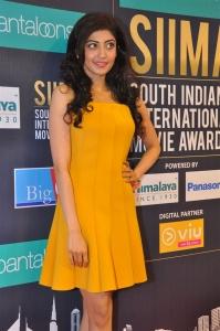 Pranitha Subhash @ SIIMA Short Film Awards 2018 Curtain Raiser Stills