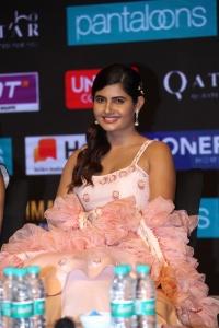 Ashima Narwal @ SIIMA Awards 2019 Curtain Raiser Event Stills