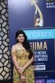 SIIMA Awards 2019 Curtain Raiser Event Stills