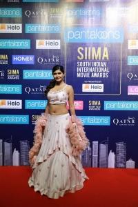 Actress Ashima Narwal @ SIIMA Short Film Awards 2019 Press Meet Stills
