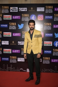 Adith Arun @ SIIMA 2021 Awards Red Carpet Day 2 Pics