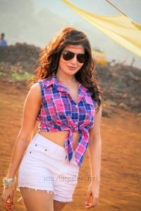 Actress Samantha Ruth Prabhu in Sikandar Telugu Movie Stills