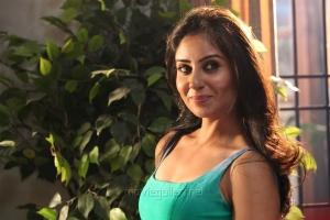 Actress Bhanu Sri Mehra in Simba Movie Stills