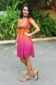 Sindhu Lokanath Hot Photo Shoot at Coffee with My wife Movie Launch