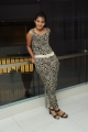 Sindhu Loknath Photos at Coffee With My Wife Audio Release
