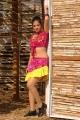 Sindhu Tolani Latest Hot Stills in Murattu Kaalai