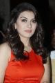 Hansika Motwani At Singam 2 Movie Press Meet Stills