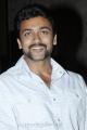 Suriya At Singam 2 Movie Press Meet Stills