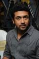 Actor Surya at Singam (Yamudu-2) Success Meet Stills