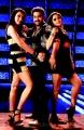 Jr.NTR, Trisha, Karthika Nair in Singamagan Movie Stills