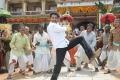 Singamagan Movie Stills