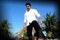 Singamagan Tamil Movie Stills