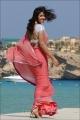 Actress Richa Gangopadhyay in Sir Vanthara Movie Stills