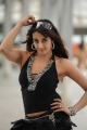 Actress Sanjana in Siva Kesav Movie Stills