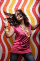Sneha Actress Hot Photoshoot Stills