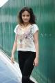 Telugu Actress Sneha Ullal New Images