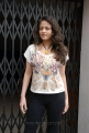 Sneha Ullal at Action with Entertainment Movie Press Meet