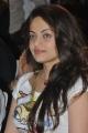 Actress Sneha Ullal Photos at Park Audio Release
