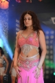 Sneha Ullal Ding Dong Item Song Hot Pics in Action 3D Movie