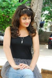 Sneha Ullal Photo Shoot Gallery