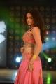 Actress Sneha Ullal Spicy Gallery in Action 3D Movie