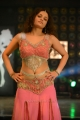 Actress Sneha Ullal Hot Spicy Gallery in Light Red Dress