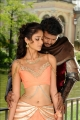 Actress Ileana Hot Stills in Snehitudu