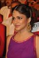 Lavanya Tripathi @ Soggade Chinni Nayana Audio Launch Photos