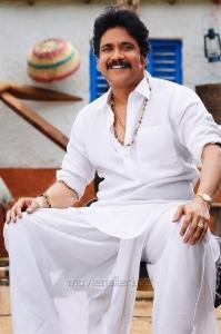 Actor Nagarjuna in Soggade Chinni Nayana Telugu Movie Stills