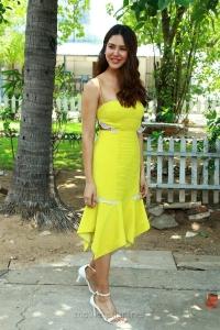 Actress Sonam Bajwa Pics HD @ Katteri Press Meet