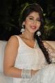 Actress Sonarika Bhadoria Stills @ Jadoogadu Audio Release