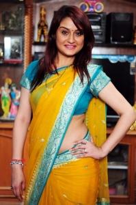 Telugu Actress Sonia Agarwal in Yellow Saree Photos